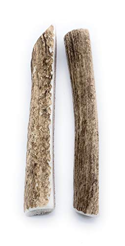 Perfect Pet Chews Split Elk Antler Dog Chew - Grade A, All Natural, Organic, and Long Lasting Treats - Made from Naturally Shed Antlers in The USA - Large Treat - 2-Count