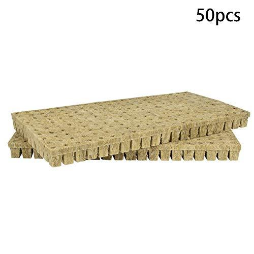 Zacha ckwool Cubes Lot de 50 compresses ventilées pour serre 25 x 25 x 40 mm