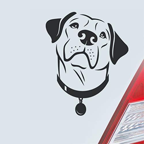 Mooie labradorhond scheurt in de ogen, die boven het hemel-auto-raam-deur-achterruit bekijken