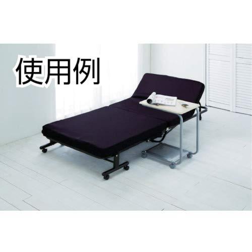IRISOHYAMA(アイリスオーヤマ)『折りたたみベッド(OTB-TRN)』