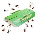 Greenty 12 Trampas Trampas contra Escarabajos y Cucarachas, Trampa Adhesiva Cucarachas Bolsa, con atrayente Natural de Efecto rápido