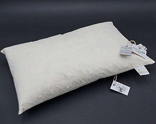 miaming.DE W-Basic 40x60cm SOFAKISSENFÜLLUNG (fest & flauschig) Premium Kissen Inletts (+Gratis Pflegemittel)