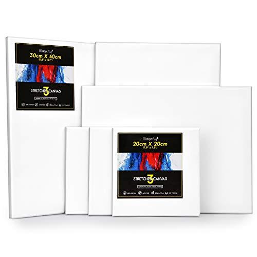 Magicfly Set da 6 Tele Intelaiate per Dipingere 30x40cm, 20x20cm, Telaio per Tela - 100% Cotone Bianco e Legno di Pino 280g/m² - per Pittura Acrilici Colata Olio d'Arte Tempere Gouache