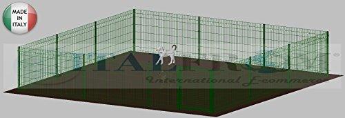 ITALFROM .clôture-Box modulaire pour Chiens en Fer galvanisé et Verni Vert avec poteaux à Enfiler – 600 x 600 x 102 H cm