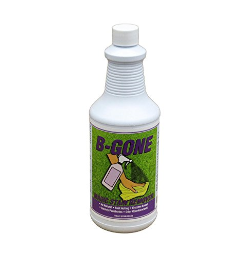 B-Gone Magic Carpet Foul Odor & Organic Stain Remover, Fast Acting Triple Action Enzyme Blood and Vomit Odor & Stain Remover and SPOT Stain Remover 32OZ