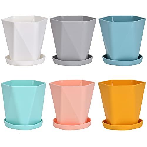 Queta Set di 6 vasi in plastica con sottovaso, per piante in miniatura (rosa, giallo, blu, bianco, verde, grigio)