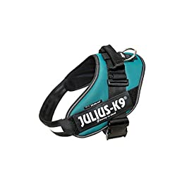 Julius-K9, 16IDC-PG-2, IDC Powerharness, dog harness, Size: XL/2, Petrol Green