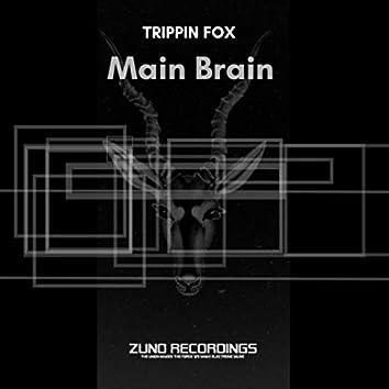 Main Brain
