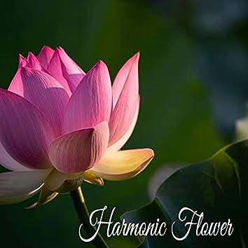 Harmonic Flower