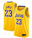 SansFin Hommes Adulte Lebron James #23 Lakers Maillot Basketball Jersey Basket Maillots de Basket...