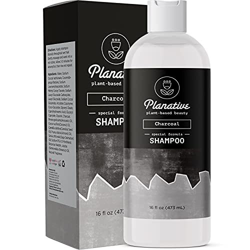 Activated Charcoal Shampoo for Oily Hair - Sulfate Free Clarifying Shampoo for Build Up and Scalp Detox - Deep Cleansing Shampoo for Greasy Hair and Scalp Cleanser for Build Up with Moisturizing Oils