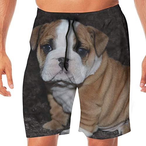 Leuke English Bulldog Quick Dry Shorts van elastische kant Beach Swim Trunks Zwemsuit met zakken.
