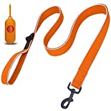 voopet 4 Feet Dog Leash, Strong and Soft Padded Pet Leash with Dispenser for Poop Bags, Perfect Length Pet Rope Between Control and Free Walking