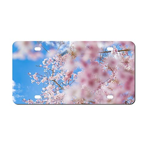Blossom Cherry License Plate Aluminum Metal License Plate Car Tag Novelty Home Decoration for Women Girls Men Boys 6 inch X 12 inch