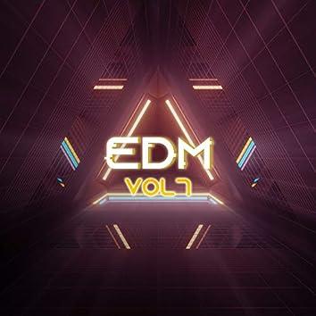 EDM, Vol. 7