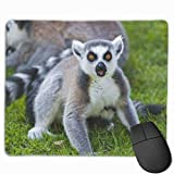 Lemurs Grass Family Gaming Mouse Pad Non-Slip Rubber Mousepad for Home and Office Mouse mat 9.8' x 11.8'