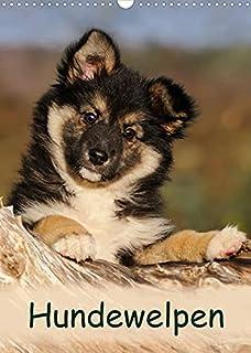 Hundewelpen (Wandkalender 2022 DIN A3 hoch): Niedliche Welpen zum Liebhaben (Monatskalender, 14 Seiten )