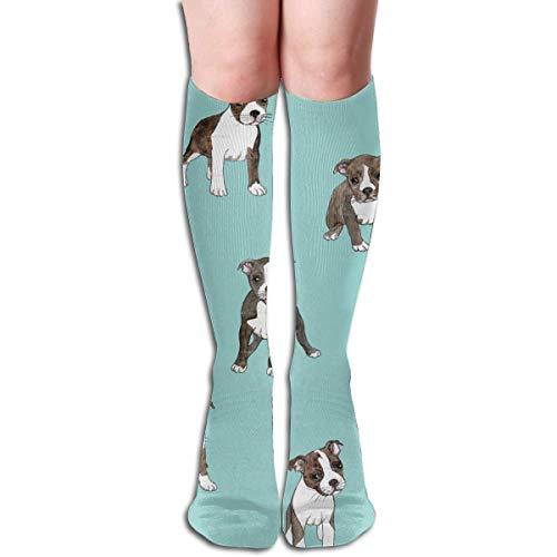 Ccsoixu Boston Terrier Dog Blue 50 Full Comfort Knee High Socks Cotton Long Knee High Socks