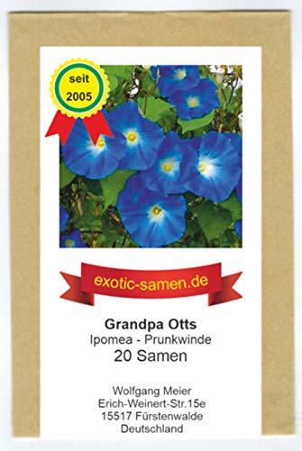 Ipomoea purpurea - Prunkwinde - Grandpa Otts - 20 Samen