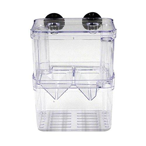 UEETEK Ablaichbehälter Ablaichkasten Fischzucht Isolation Box für Aquarium (klein)