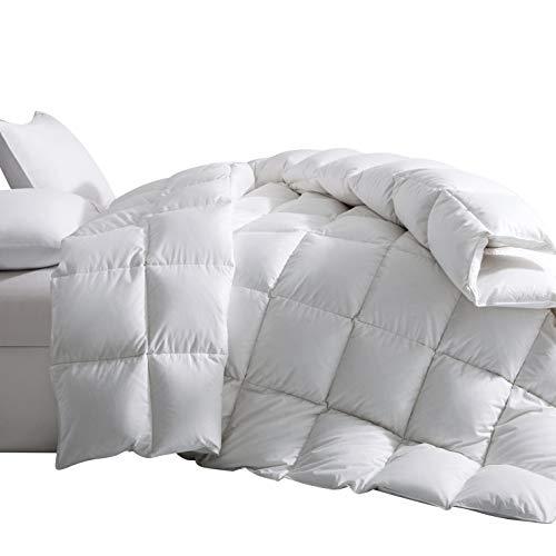 Downcy - Edredón nórdico de 100 % plumón de ganso de primera calidad y funda de algodón 100%, 155 x 220cm (blanco)