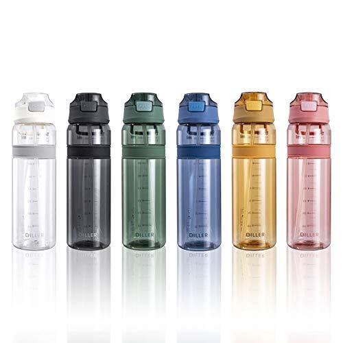 Diller Bottiglia Acqua Plastica Riutilizzabile Termica con Paglia 850ml Piccolo Grande per l'acqua a Prova di perdite Senza BPA D36 (850ml, Grigio)