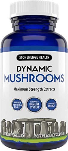 Stonehenge Health Dynamic Mushrooms - 100% Fruiting Bodies & Extracts - Lion's Mane, Chaga, Maitake, Shiitake, Reishi - Nootropic Brain & Focus, Immune System Booster - No Mycelium -60 Veggie Capsules
