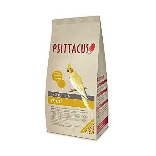 Psittacus Pienso para Loro - 450 gr 🔥