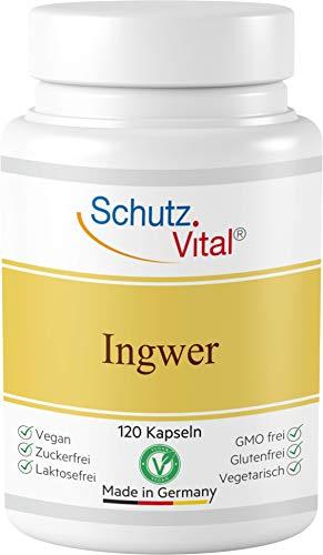 Ingwer Kapseln hochdosiert VEGAN - 1000 mg Tagesdosis - 100% Ingwer gemahlen - Kein Ingwer Extrakt - 120 Kapseln - Laborgeprüft und Herstellung in Deutschland