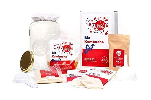 Original Kombucha Set mit vitalem Kombuchapilz und Starter für bis zu 3 L pro Ansatz mit einfacher Anleitung, Rezept und Erfolgsgarantie von Fairment®