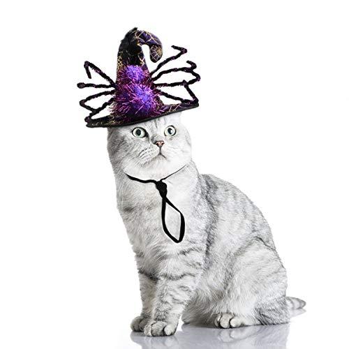 Enjoying Dog Spider Hat Cat Halloween Costume Hats Puppy Witch Hats Dog Wizard Hat Halloween Hat for Women, Children