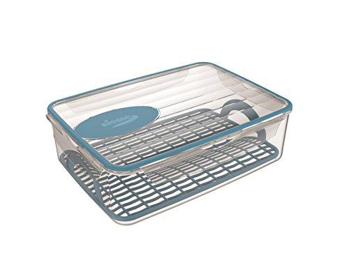 Biesse Casa Van Koelkast naar Magnetron in één klik luchtdichte/waterdichte containers 4.5 lt capaciteit, met dubbele geïnjecteerde Plastic en Rubber, rooster en coolin/verwarming Gel, Blauw, Grootte