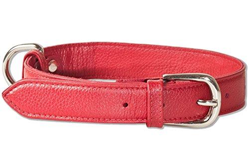 Rimbaldi® Voll-Leder Hundehalsband für mittelgroße Hunde mit 35-45 cm Halsumfang in Weinrot