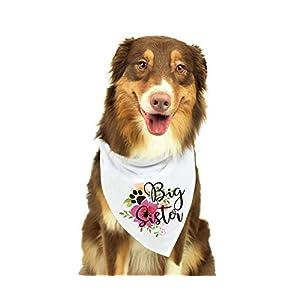 KEVIN-KW Big Sister Dog Bandana, Pregnancy Announcement Dog Bandana, Gender Reveal Photo Prop, Pet Scarf, Pet Accessories