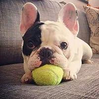 WTYD ペット用品 ラバー·ペット玩具ボール弾性タイプのペット·テニス·ボール、直径:6cm 家庭用ペット