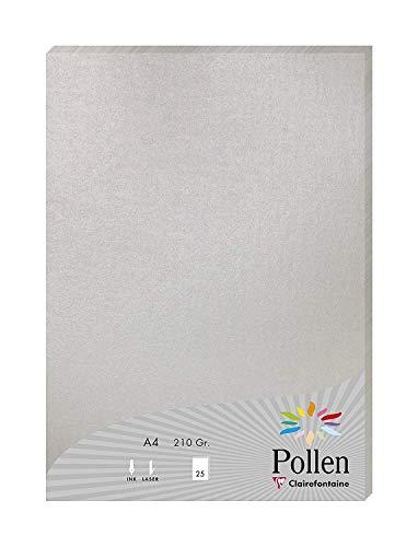 Clairefontaine 24389C Packung mit 25 Blatt Pollen, DIN A4, 210 x 297 mm, 210g, Perlmutt Silber