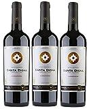 Santa Digna Carmenère, Vino Tinto - 3 botellas de 75 cl, Total: 2250 ml