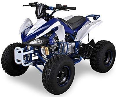 Kinder Quad S-14 125 cc Motor Miniquad 125 ccm Speedy Kinderfahrzeug Midiquad (Blau/Weiß)