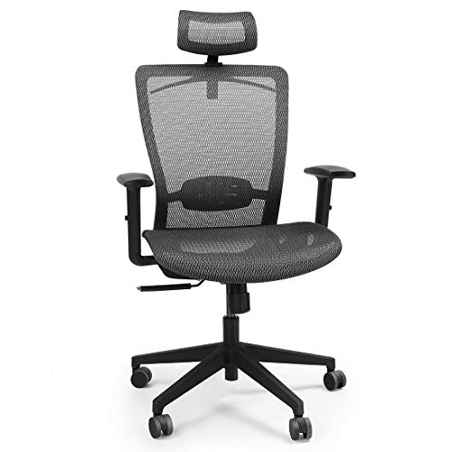 FlexiSpot OC3B Ergonomic Executive Mesh Office Chair Swivel Height Adjustable Seat Headrest Armrest Lumbar Support Caster Wheels Black Mesh Seat Computer Task Chair