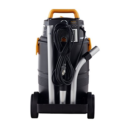 HEPA Vacuum to remove mold spores