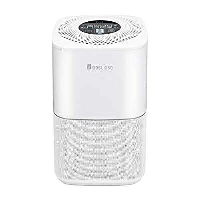 RIGOGLIOSO Air Purifier for Home Smokers Allergies,True HEPA Filters,Ultra-smart monitoring of air quality filtration System,Desktop Purifiers Filtration with Night Light,SY910