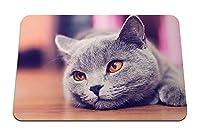 26cmx21cm マウスパッド (動物猫は見える) パターンカスタムの マウスパッド
