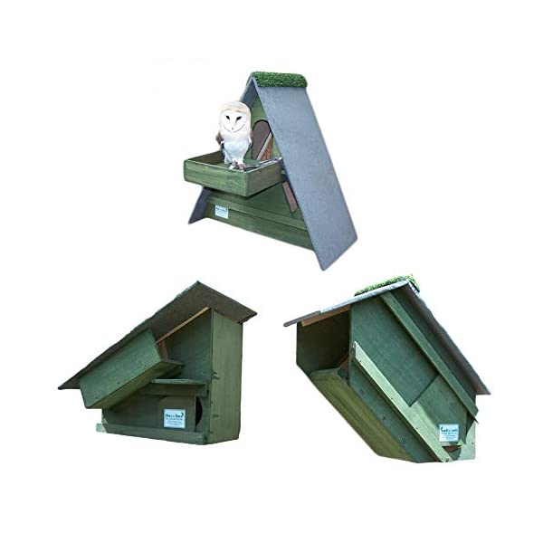 Forest Green 3 Owl Nest Boxes (1x Barn Owl Box, 1 x Tawny Owl Box and 1x Little Owl Nest Box)