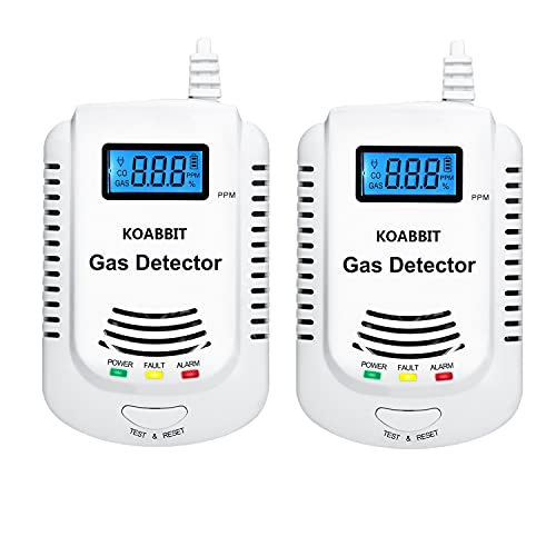 Plug-in Carbon Monoxide Detector and Natural Gas...