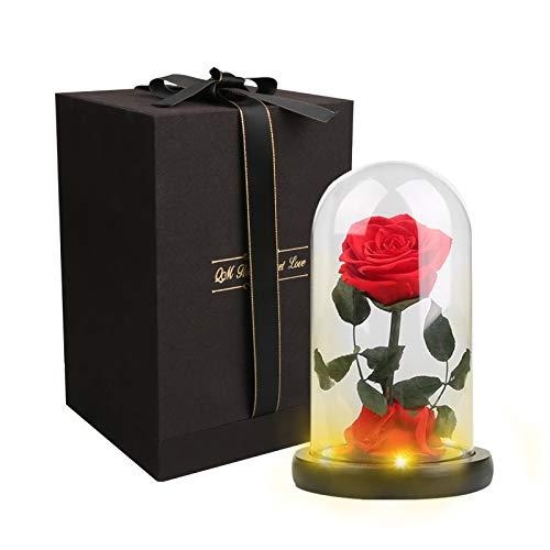 Rosa incantata La Bella e La Bestia, Rosa Glamour con cupola in vetro su base, rosa stellata con luci LED, regalo per innamorati, San Valentino, compleanno, matrimonio e Natale (A).
