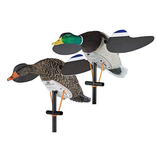 Lucky Duck Lucky Pair II