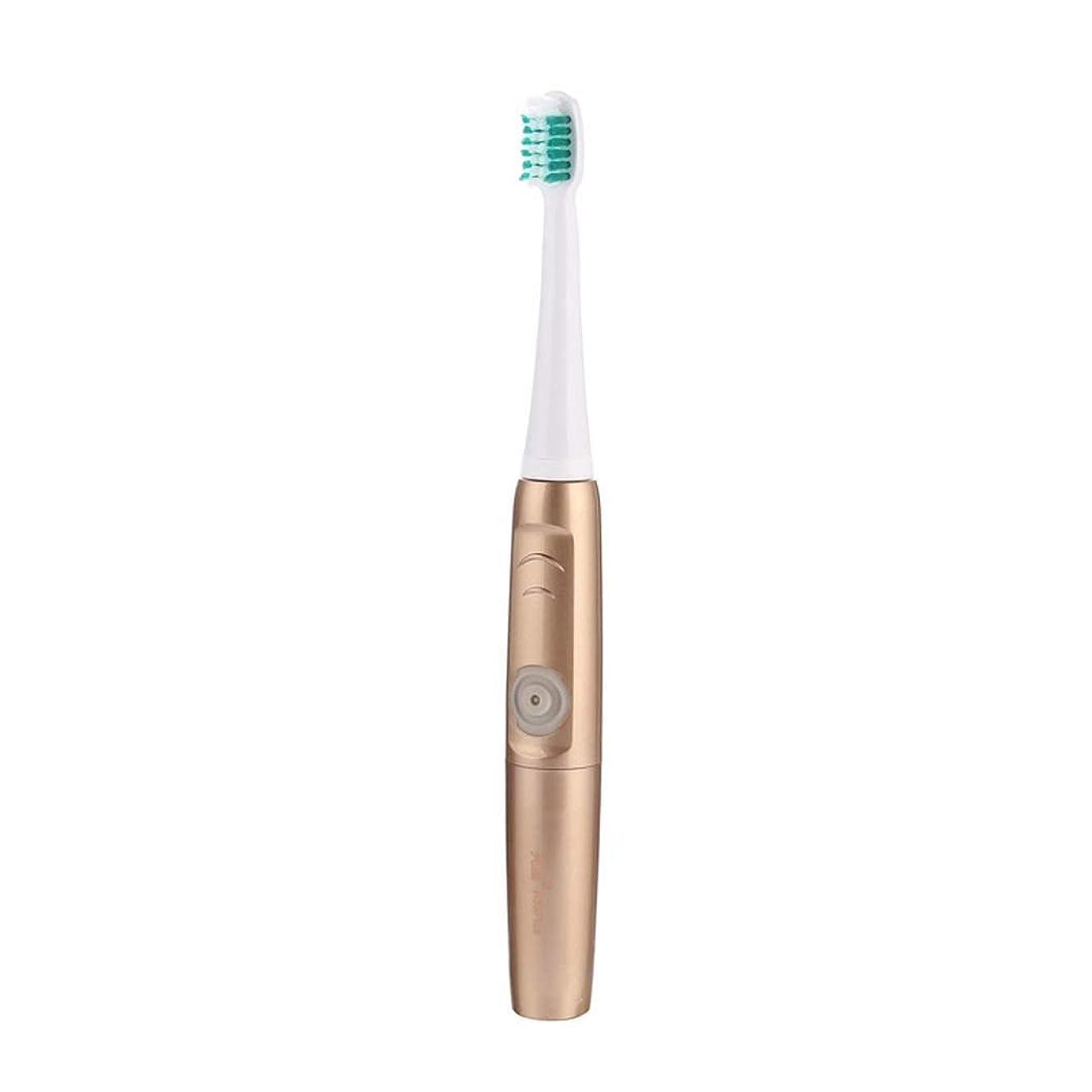 予備ヘビー控える電動歯ブラシ、充電式ポータブル歯ブラシ、超音波電動防水歯ブラシ、誘導充電、3個の交換用ヘッド付き