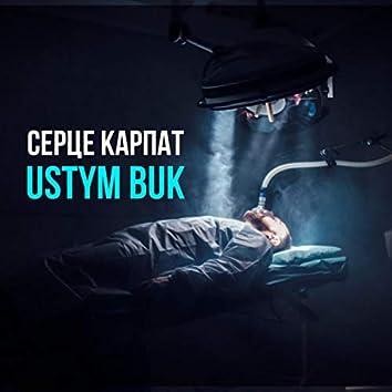 Серце Карпат (Radio Edit)
