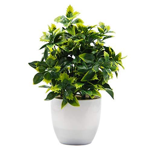 OFFIDIX Plantas Artificiales en Maceta Plantas de plástico de imitación con macetas Ini Plantas de eucalipto de plástico para decoración de oficinas en el hogar