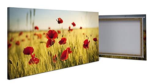 wandmotiv24 Leinwandbild Kornfeld mit Mohnblumen 100x50cm (BxH) Bilder auf Leinwand, Wandbild, Leinwandbilder, Fotogeschenke, Dekoration Wohnung modern, Deko M0398